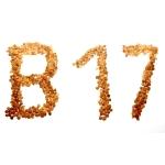 Где содержится витамин в17?