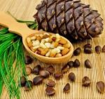 Польза и вред кедровых орехов - полезные свойства для организма