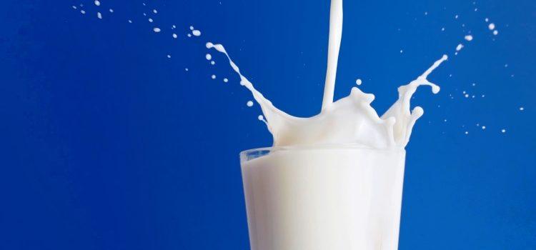 Молочная диета для похудения: основные принципы питания