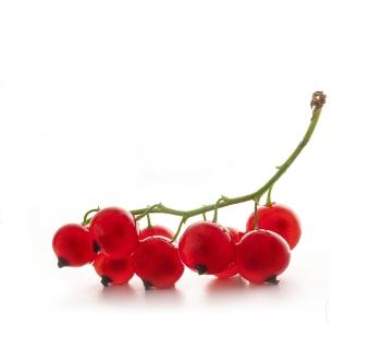 Противопоказания красной смородины