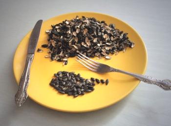 Противопоказания для употребления в пищу жареных семечек подсолнечника