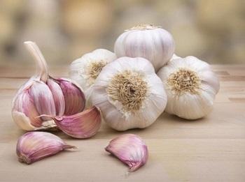 снок - особенности влияния овоща на организм человека