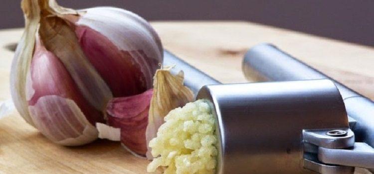 Чеснок и его полезные свойства для организма человека