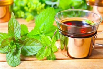 Какие существуют противопоказания к употреблению напитков из мелиссы