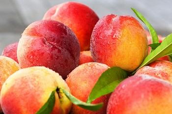 Лечебные свойства и применение персиков в народной медицине
