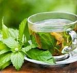 Листья смородины - полезные свойства, противопоказания и рецепты приготовления