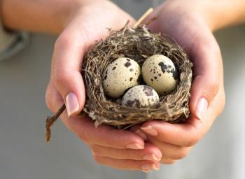 Как принимать перепелиные яйца для женщин и в чем польза и вред этого продукта