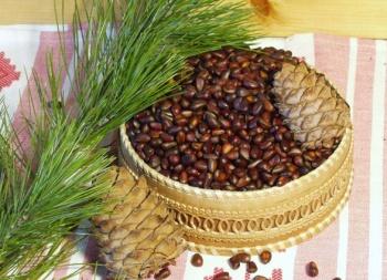 Кедровые орехи содержат магний, а это огромная польза для женщин