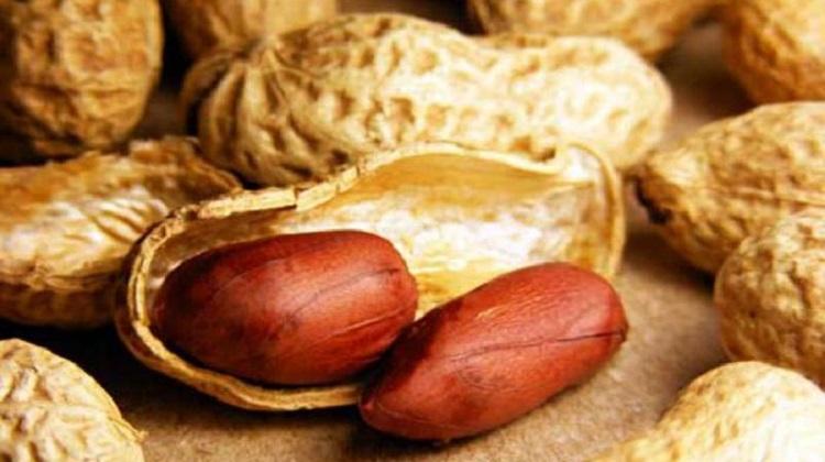 Чем может быть вреден арахис для женского организма - противопоказания