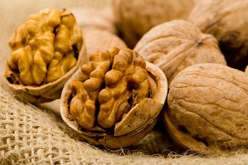 Грецкие орехи - в чем заключается польза продукта для женского организма
