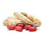 Польза и вред арахиса и чем он полезен для организма человека