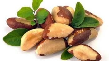 Польза и возможный вред для женского организма бразильского ореха