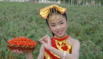 Польза и вред ягод годжи для детей, как правильно принимать плоды в детском возрасте