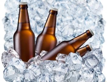 Польза и вред пива для мужчин, где и сколько хранить напиток