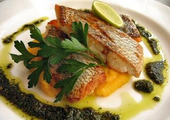 Польза и вред рыбы зубатки для человека, применение в кулинарии