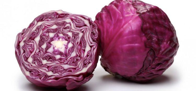 Краснокочанная капуста: польза и вред, свойства и противопоказания, применение в кулинарии