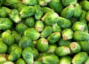 Польза и вред брюссельской капусты, витаминный и минеральный состав