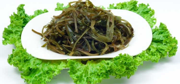 Лечебные свойства, а также польза и вред морской капусты (ламинарии)