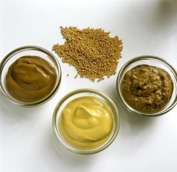 Горчица: польза и вред для организма, рекомендации по употреблению и применению