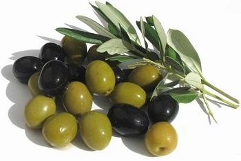 Как применяются полезные свойства оливок в народной медицине