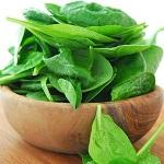 Полезные свойства шпината для организма мужчин и женщин