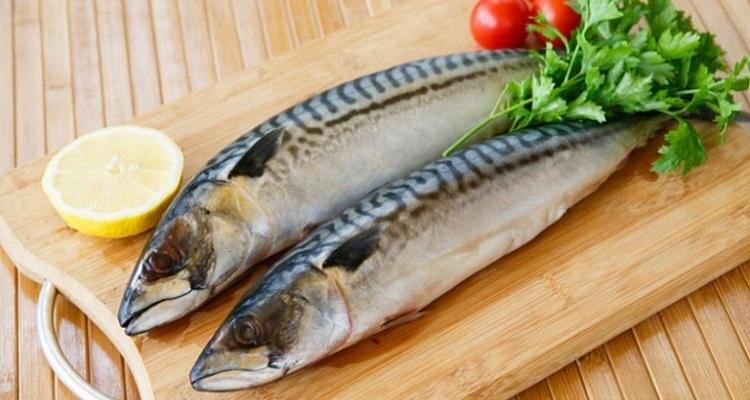 Рыба скумбрия хеы