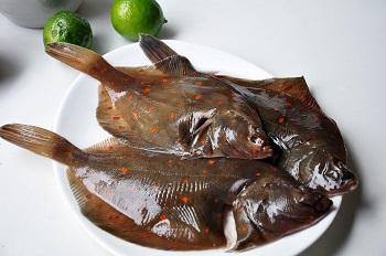 Правила выбора качественной рыбы - камбала и ее полезные свойства
