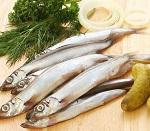 Рыба путассу - состав и полезные советы по приготовлению