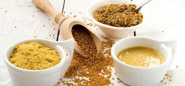 Горчица: польза и вред для организма, противопоказания, применение в народной медицине и кулинарии