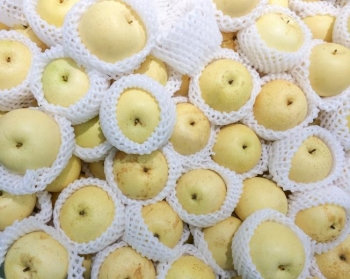 Китайская груша: ее польза и вред, советы по выбору и хранению фрукта
