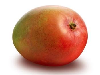Манго: его польза и вред для организма, советы по выбору фрукта