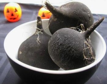 Черная редька: ее польза и вред, состав и калорийность