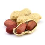 Ответ на вопрос, чем полезен арахис для мужчин