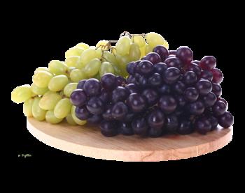 Польза и вред винограда для организма, советы по выбору качественного продукта