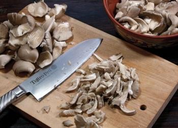 Грибы вешенки: их польза и вред, применение в кулинарии