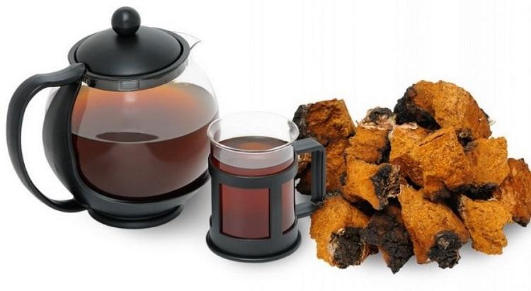 Как приготовить настойку из гриба чага - полезный рецепт