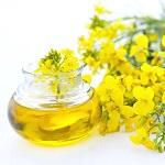 Польза и вред рапсового масла для здоровья человека - основные моменты