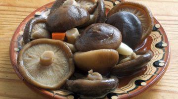 Чем полезны и вредны грибы шиитаке