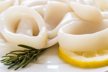 Польза и вред кальмаров, состав и калорийность, пищевая ценность