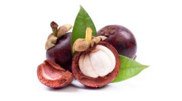 Фрукт мангустин: полезные свойства и противопоказания, области применения, польза и вред