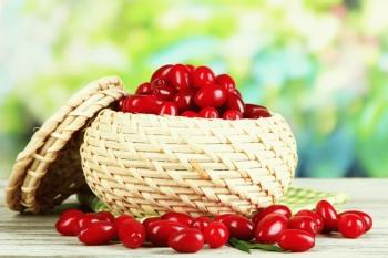 Кизил: полезные свойства и противопоказания для здоровья