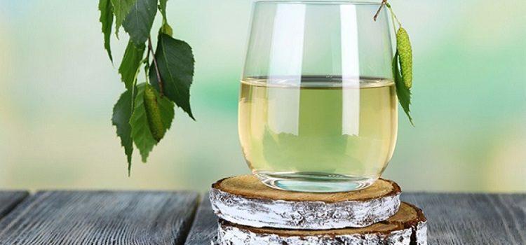 Березовый сок - польза и вред ценного природного продукта
