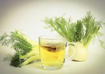 Чай с фенхелем - рецепт приготовления чудодейственного напитка