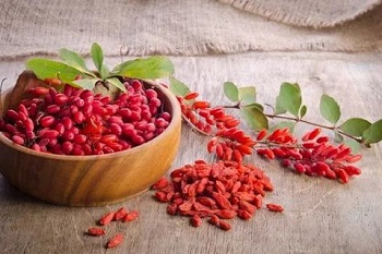 Чем полезен барбарис - лечебный эффект в народной медицине