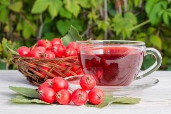 Чем полезны плоды боярышника и их химический состав