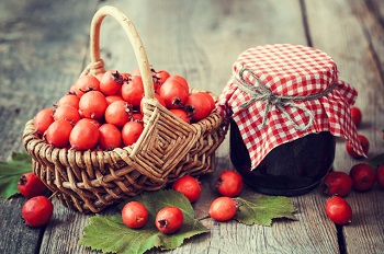 Как используют плоды боярышника в кулинарии - полезные рецепты