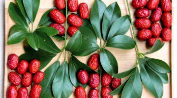 Унаби: полезные свойства и противопоказания