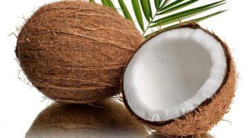 Полезные свойства и противопоказания к употреблению кокоса