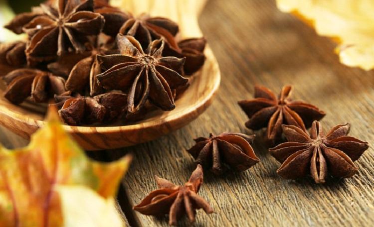 Правила выбора качественных продуктов - бадьян и его полезные свойства