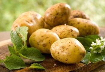 Применение картофеля в народной медицине - несколько рекомендаций